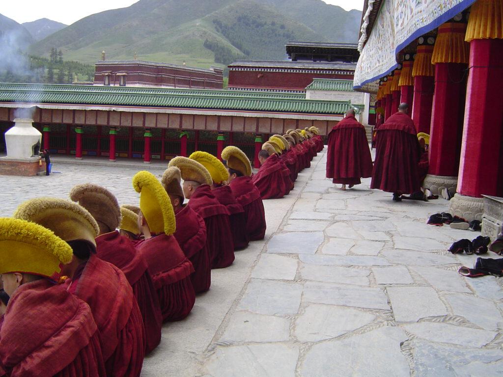 Ganz nah bei den Mönchen