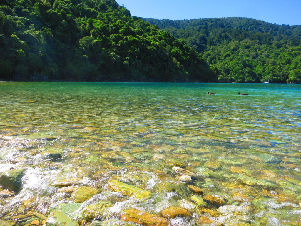 ....wunderbares Neuseeland ....