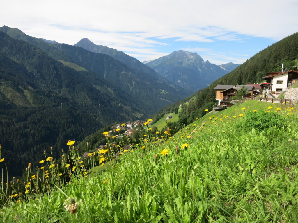Auf dem Bergmähderweg Nähe Brandberg / Zillertal