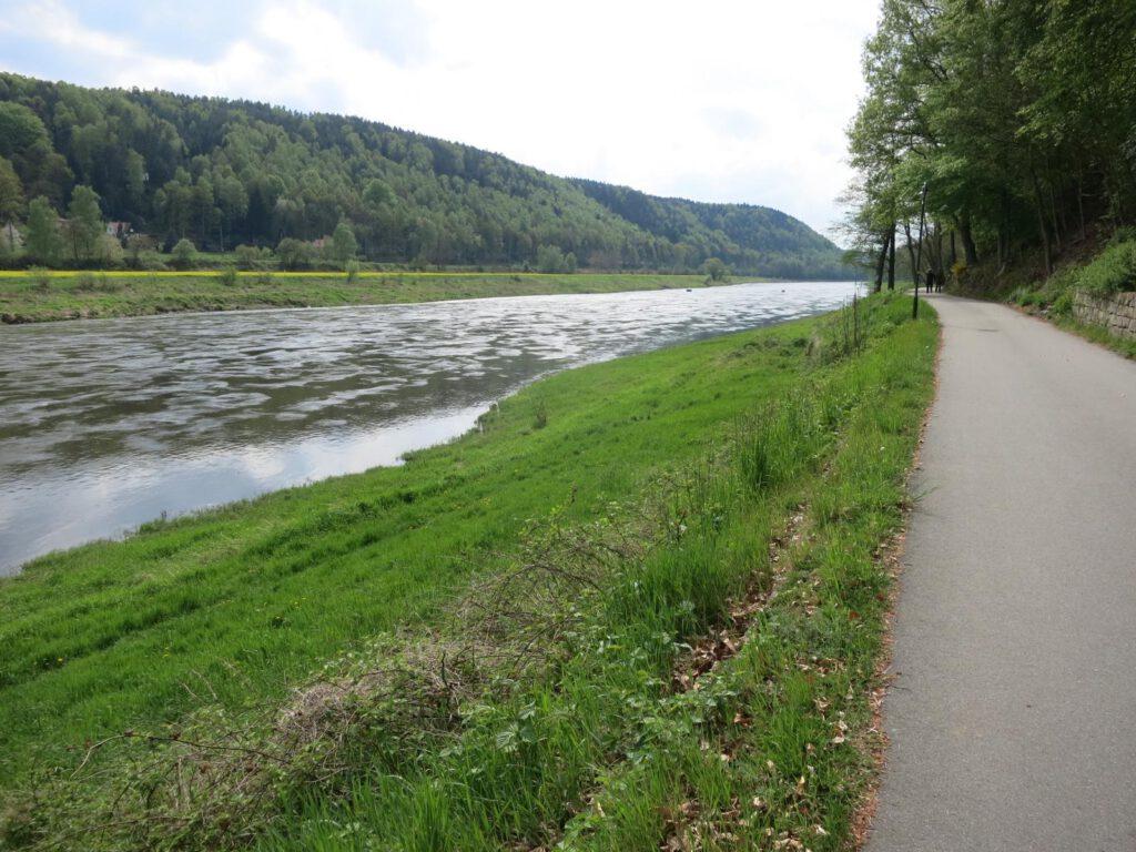 Elberadweg zwischen Rathen und Wehlen