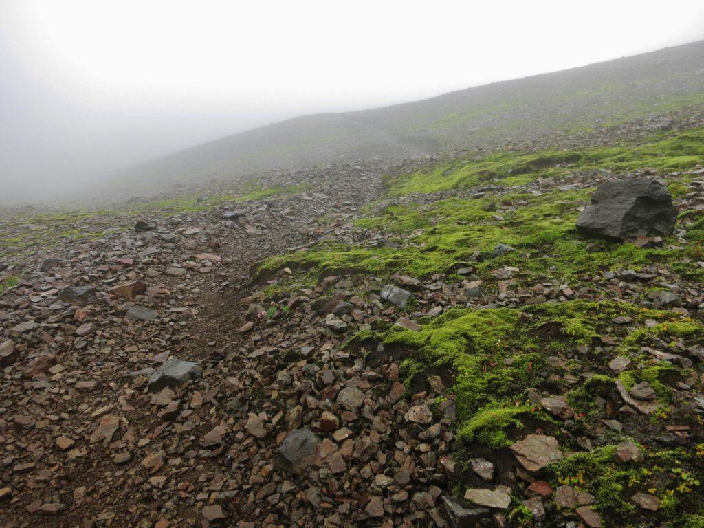 Sturm, Regen, Nebel ... auf dem Foto sieht alles gar nicht so schlimm aus ....