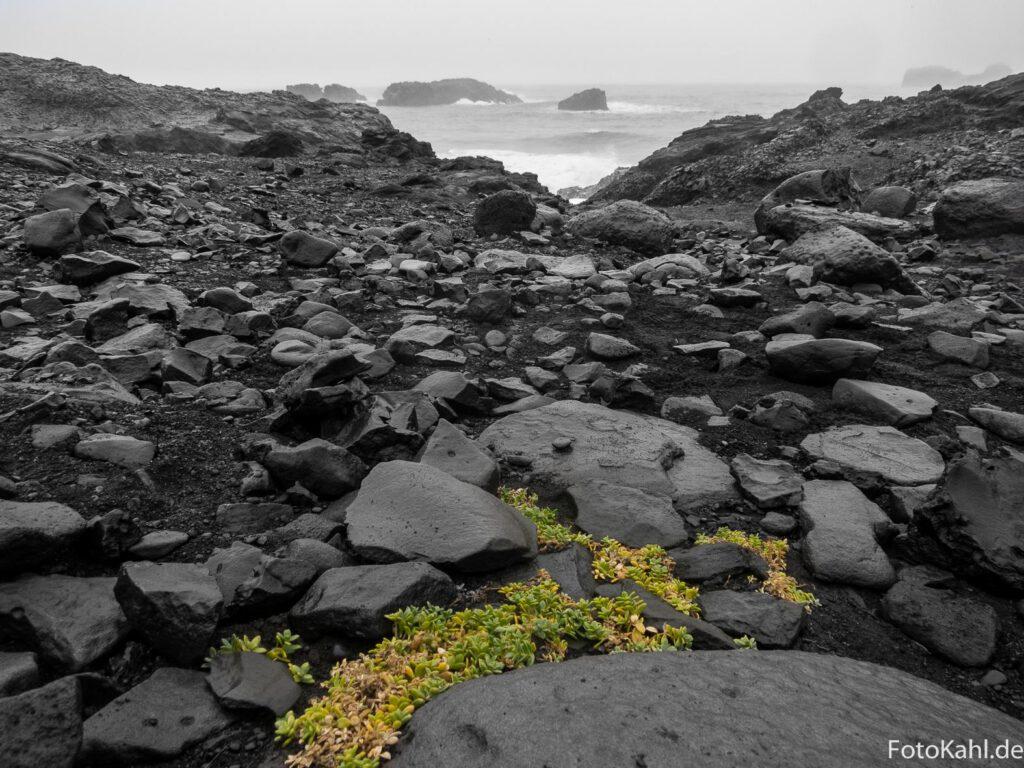 am Strand bei Dyrhólaey