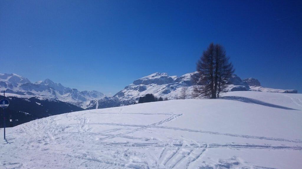 Genuss-Skigebiet Alta Badia