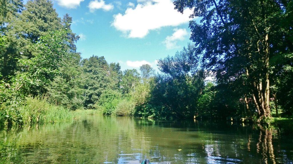 im Spreewald paddeln